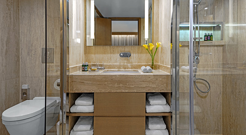 Suite bathroom on board Viking Ra